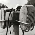 JoJo1951
